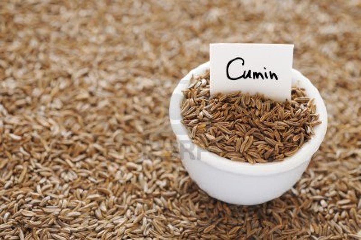 dried-cumin-in-a-white-ceramic-bowl-liste-dix-herbes-et-epices-aident-la-perte-de-poids