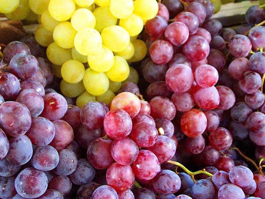 Les-raisins-regime-naturel100