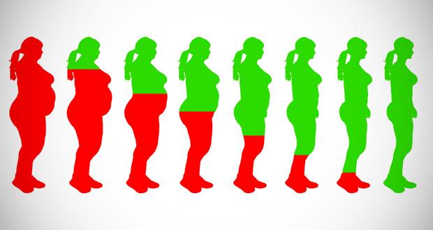 Les 18 meilleurs aliments pour perdre du poids rapidement