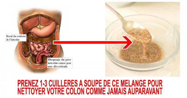 Mélange à 2 ingrédients pour nettoyer le côlon et évacuer les kilos de déchets de votre taille et de votre corps