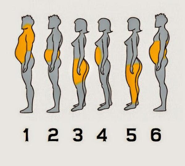 Voyez par vous-même quelle partie du corps a le plus de gras: vous apprendrez quel genre de vie vous avez et comment faire avec
